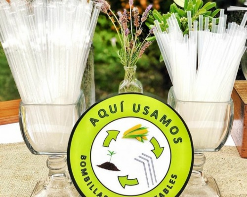 First 100% organic and compostable straw made in Chile