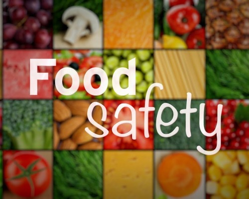 Present and Future of Food Safety